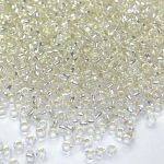 Rocail 13/0 Silver Lined Crystal col 78102 - 10 gram